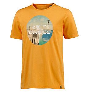 O'NEILL Look Back T-Shirt Herren gelb