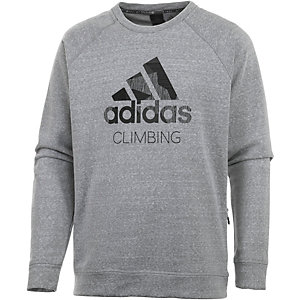 adidas Logo Sweatshirt Herren grau