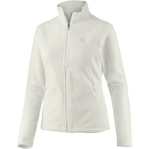 The North Face 100 Glacier Fleecejacke Damen grau