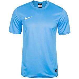 Nike Park V Fußballtrikot Herren blau / weiß