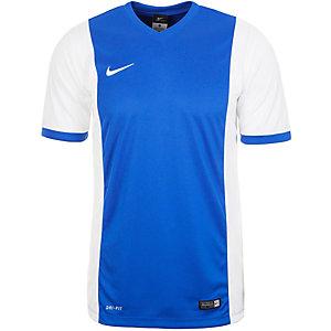 Nike Park Derby Fußballtrikot Herren blau / weiß