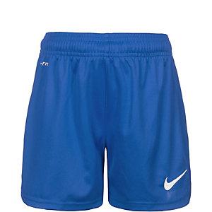 Nike Park Knit Fußballshorts Kinder blau / weiß