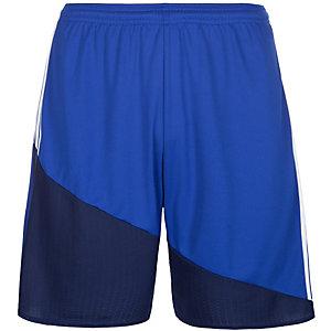 adidas Regi 16 Fußballshorts Herren blau / weiß
