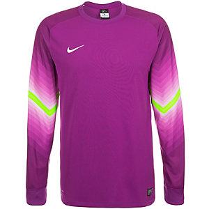 Nike Goleiro Torwarttrikot Herren lila / grün