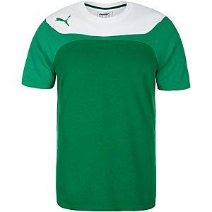 PUMA Esito 3 Leisure Fanshirt Herren grün / weiß