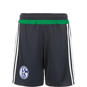 adidas FC Schalke 04 15/16 3rd Fußballshorts Jungen grau / grün / weiß