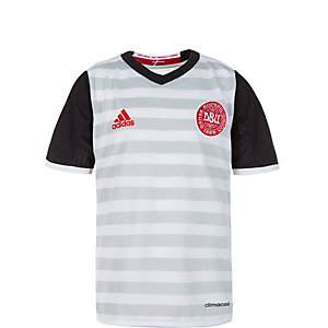 adidas Dänemark 2016 Auswärts Fußballtrikot Kinder weiß / grau / schwarz