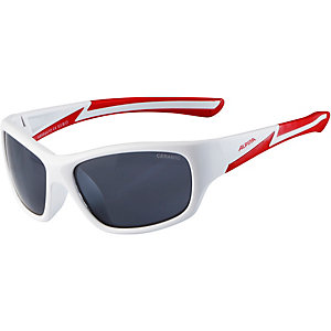 ALPINA Sportbrille white matt-red