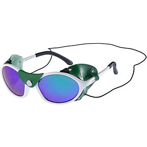 ALPINA Gletscherbrille white-green