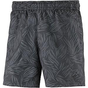 Nike Shorts Herren grau