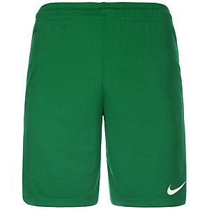 Nike Park II Fußballshorts Herren grün / weiß