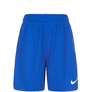 Nike Park II Fußballshorts Kinder blau / weiß