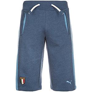 PUMA FIGC Italia Azzurri Fußballshorts Herren dunkelblau / hellblau
