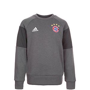 adidas FC Bayern München Sweatshirt Kinder grau / dunkelgrau