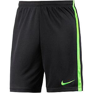 Nike Academy Funktionsshorts Herren schwarz/grün
