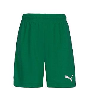 PUMA Velize Fußballshorts Kinder grün / weiß