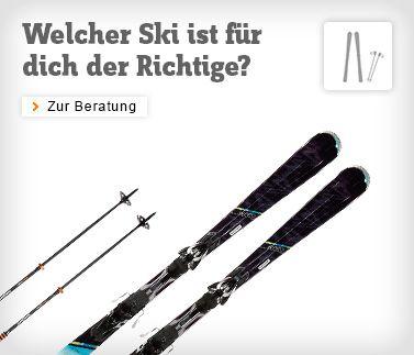 Ski kaufen online