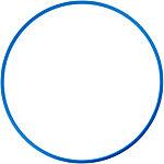 Intersport Bauchtrainer blau