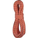 EDELRID Starling Pro Dry 8,2mm Kletterseil terrakotta