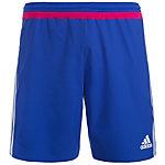 adidas Campeon 15 Fußballshorts Herren blau / pink / weiß