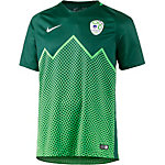 Nike Slowenien 2016 Heim Fußballtrikot Herren hellblau/grün