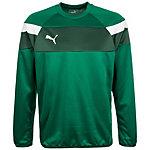 PUMA Spirit II Sweatshirt Herren grün / weiß