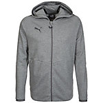 PUMA Ascension Casuals Trainingsjacke Herren grau