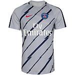 Nike Paris St.-Germain Dry Squad Fanshirt Herren grau / dunkelblau